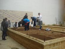 Preparando el terreno