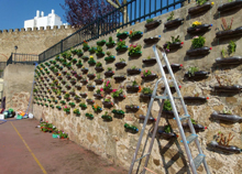 Jardín vertical 1403 Imagen destacada
