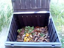 Primeros pasos del compost Imagen destacada