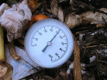 Termómetro compost