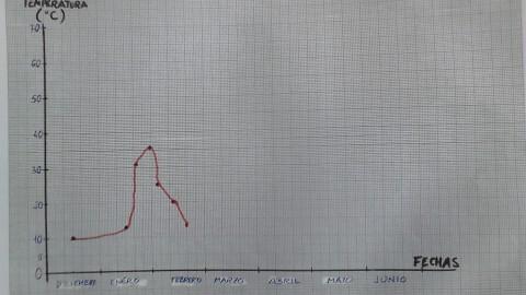2016-02 Gráfica de temperatura del compostador
