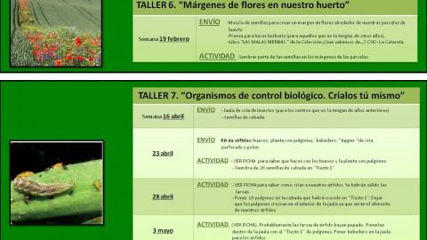 CALENDARIO ACTIVIDADES 2017-2018