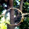 GlassesMyopia