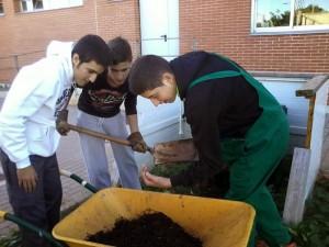 Compost anterior con lombrices