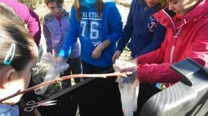 Alimentando el compost 3