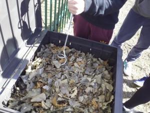 Aireando el compost