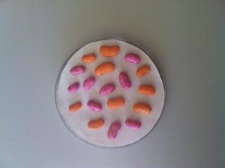 Semillas en placa